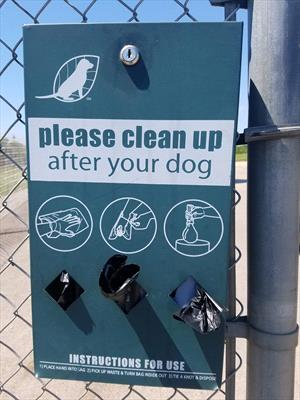 Feces Eating in Dogs and Cats - Veterinary Partner - VIN